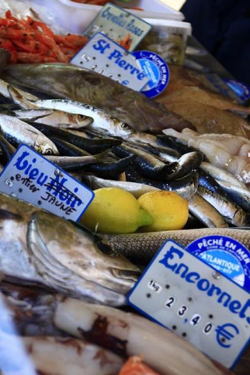 Comment bien choisir son poisson ? <em>(de Maryse Travo)</em>