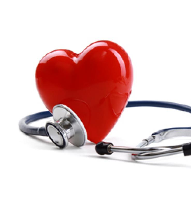 Alimentation et maladies cardiovasculaires <em>(de Delphine Cudel)</em>