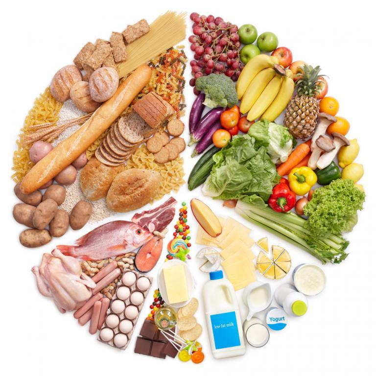 L'alimentation et la santé <em>(de Marie-Claire Le Champion)</em>