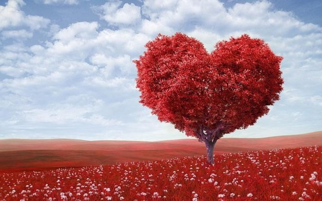 C'est la Saint Valentin ! Origine et coutumes. <em>(de Maryse Travo)</em>