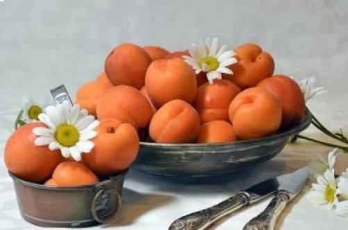 Fruits et légumes de saison : Juillet <em>(de Maryse Travo)</em>