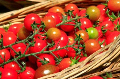 Fruits et légumes de saison : Août <em>(de Maryse Travo)</em>